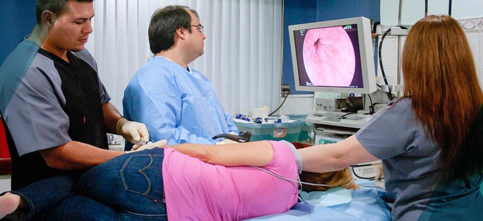 Gastroscopia